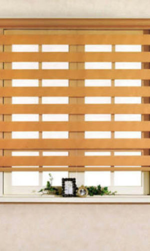 Combi Blinds supplier in cebu